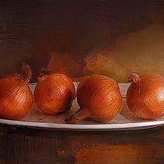 "фото ""4 луковицы"""