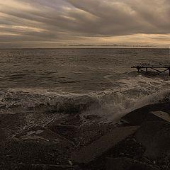 """photo """"Winter sea"""""""