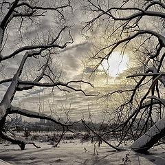 """фото """"Великаны под облаками"""""""