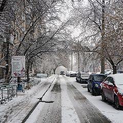 """photo """"Springtime snowfall"""""""