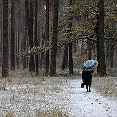 """фото """"По первому снежку."""""""