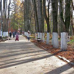 "фото ""Люди на прогулке, октябрь"""