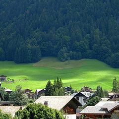 "фото ""Green Alpine meadow"""
