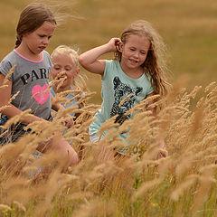 """фото """"В травах луговых..."""""""