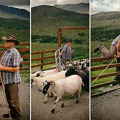 "photo ""Somewhere in Ireland ..."""