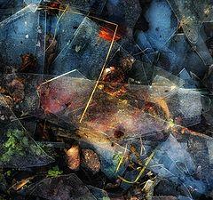"""фото """"Осенний калейдоскоп"""""""