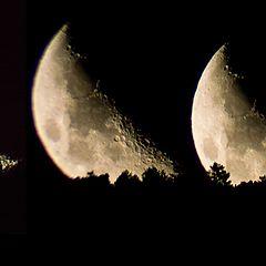 "фото ""Moon rising"""