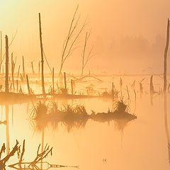 """photo """"Frosty dawn"""""""