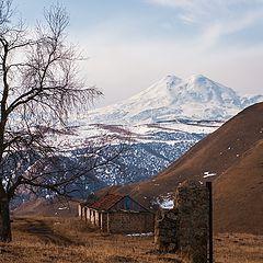 """фото """"Кавказ"""""""