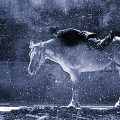 """photo """"Rider"""""""