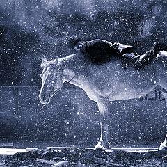 "фото ""Rider"""