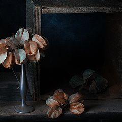 """фото """"Про вазу"""""""