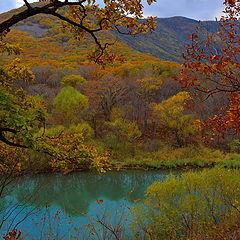 "фото ""Осенний вечер в тайге"""