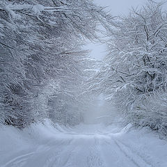 "фото ""Winter passage"""