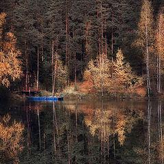 """фото """"Не уводи меня в свой лес... (с)"""""""