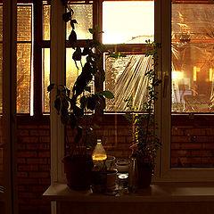 "photo ""Anti-sunshine"""