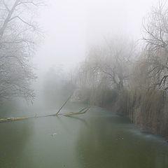 """фото """"Рассветный туман"""""""