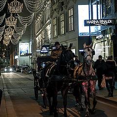 """photo """"Улицы Вены"""""""