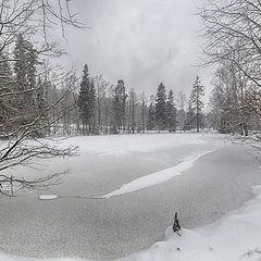 "фото ""Мокрый снегопад"""