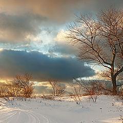 """фото """"О снежной зиме"""""""