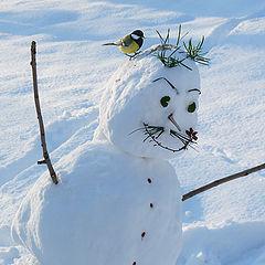 """фото """"Снеговик, снеговик, Почему ты грустный?"""""""