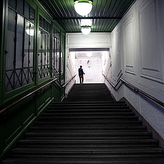"photo ""«Вверх по лестнице, ведущей вниз» Бел Кауфмана"""