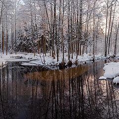 """фото """"На берегу студеной реки"""""""