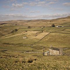 """фото """"Cumbria... Соседи..."""""""