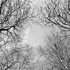 """фото """"Дырка в небо..."""""""