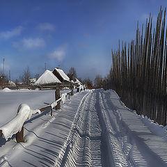 """фото """"О зимней полосатости и снежных зверях..."""""""