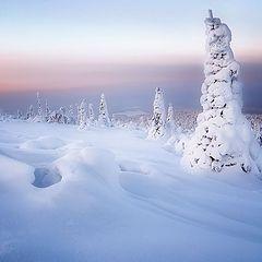 """фото """"Северные скульптуры"""""""