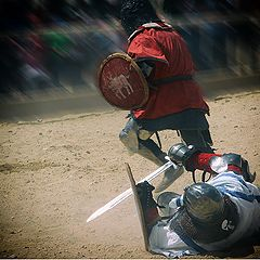 "photo ""Knight fights"""