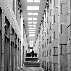 """фото """"По стълбите"""""""