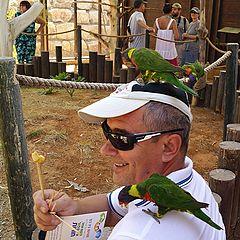 """фото """"Укротитель диких попугаев."""""""