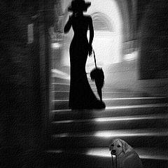 """фото """"The walk..."""""""