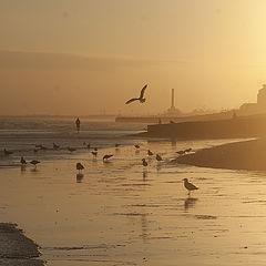"photo ""Brighton"""