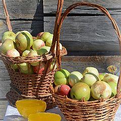 """фото """"Яблочный спас"""""""