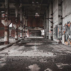 """фото """"asylum"""""""