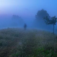 """фото """"Про ёжиков в тумане..."""""""