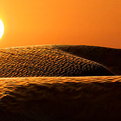 "photo ""White sun of desert"""