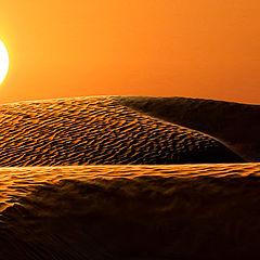 """photo """"White sun of desert"""""""