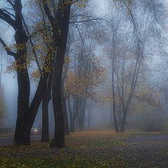 "фото ""Туман, туман"""