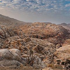 """photo """"Утро пустыни"""""""