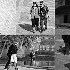 """фото """"пешеходы"""""""