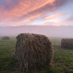 """photo """"Foggy sunrise / 0226_0430"""""""