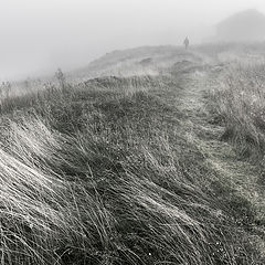 "фото ""В туман / 0233_0514"""