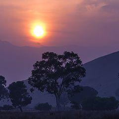 """photo """"Вечернее Солнце в Дыму от Пожара - Camp Fire"""""""