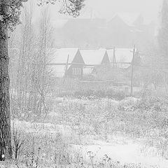 "фото ""Зима. Декабрь."""