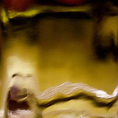 "фото ""Серебристый шлейфоносник.Завтрак."""