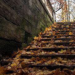 """фото """"Молча ложится осень..."""""""